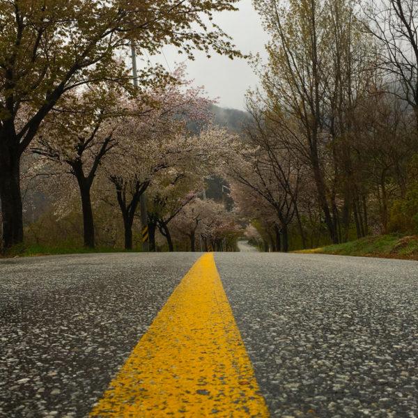 طريق طويل Long Road