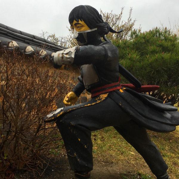 النينجا الكوري The Korean Ninja